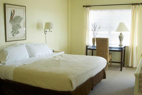 [Image: Special! Aug 23-29...$500! Oceanview Condo-Near Shops/Restaurants]