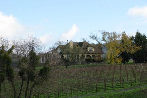[Image: Magnificant Views - Private Eight Acre Lake-Side Estate 10 Minutes from Napa]