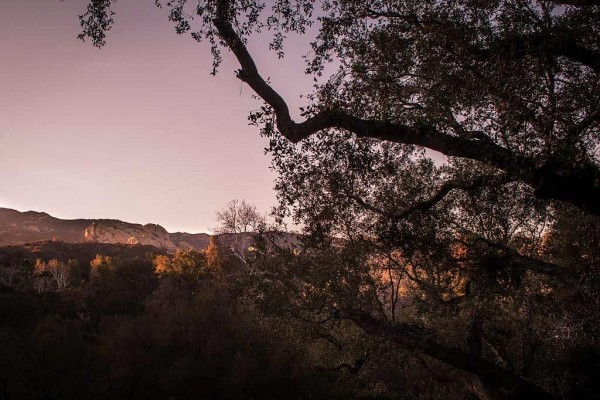 [Image: Topanga Canyon Retreat - L.a.'S Hidden Gem]