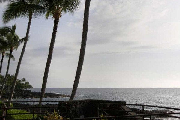 [Image: Luxurious - Fully Remodeled Oceanfront Condo - Relax in Kona!]