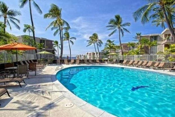 [Image: Special Price! $99.00! Absolutely the Best Oceanfront Resort in Kona Hawaii]