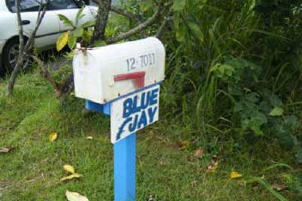 [Image: Affordable Beautiful Blue Jay Cottage Near Black Sand Beach]