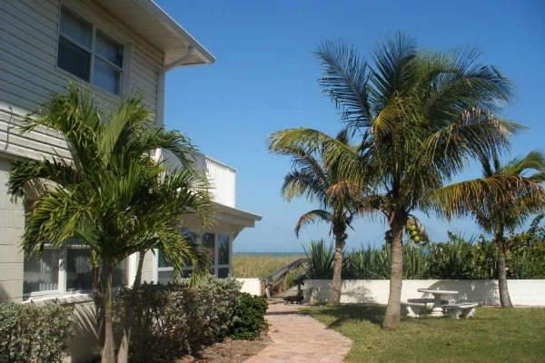 [Image: Direct Oceanfront Condo on Cocoa Beach]