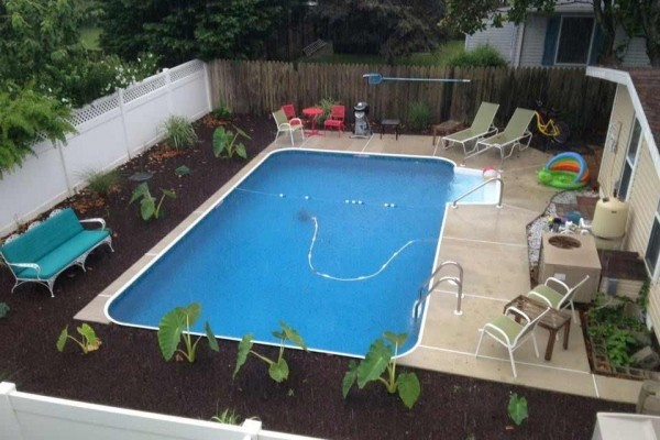 [Image: 3 Blocks to Beach, Largest Pool in Town, 320 Laurel St - Love Dogs]