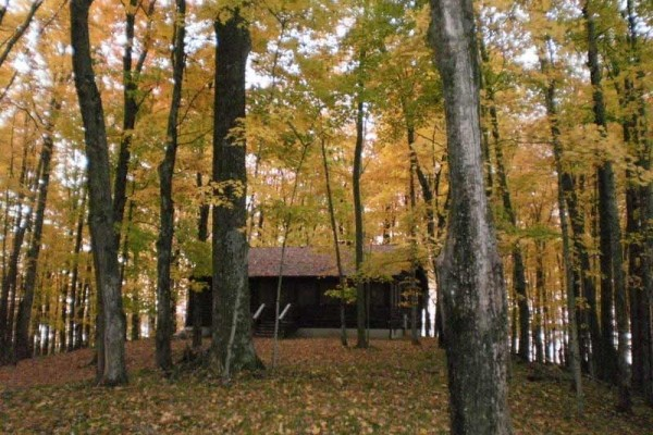 [Image: Off the Beaten Path on Lake Noquebay-Woods, Privacy and Dark Nights!]