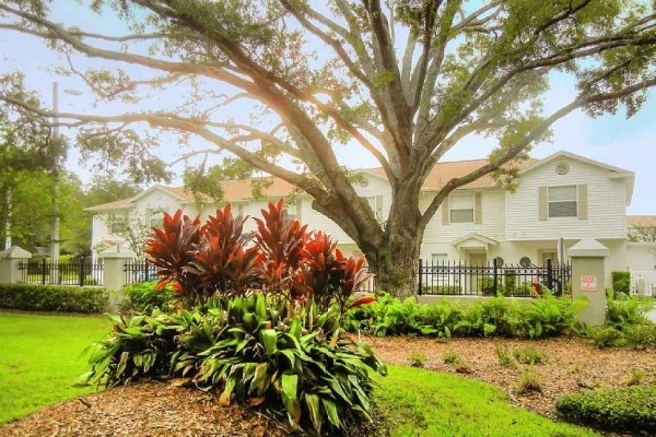 [Image: 3 Bedroom 2.5 Bath New Townhome in Central Tampa]