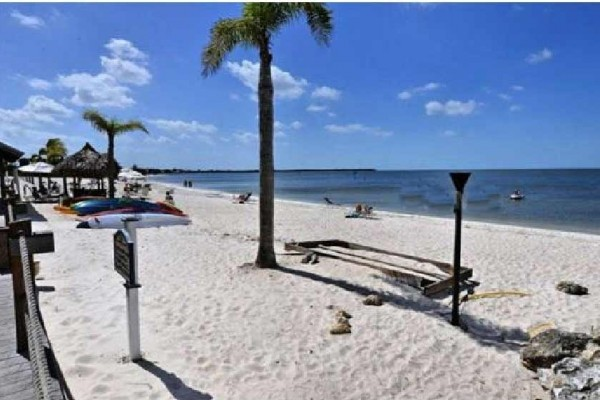 [Image: Private Beach Luxury Waterfront 3bed. 3bath Town House Suite,Tampa Bay]
